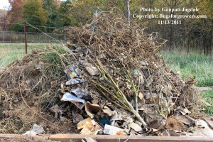 """Plant and weed debris for compost"""